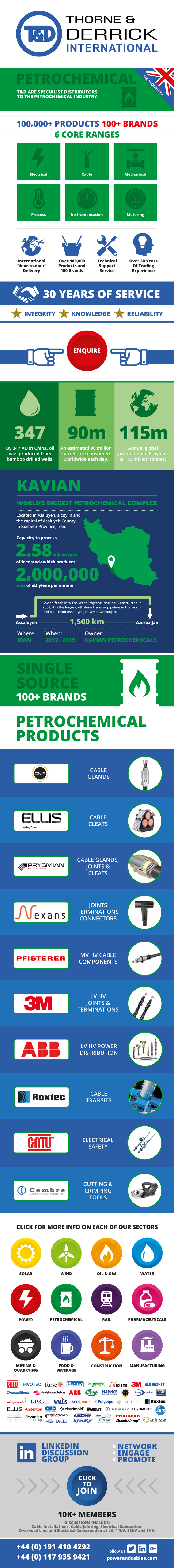 Petrochemical Infographic