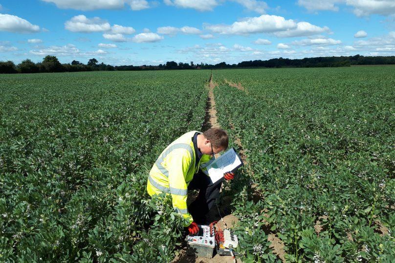 Soil Resisitivty Testing